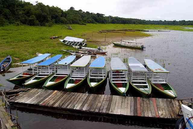 amazon in brazil