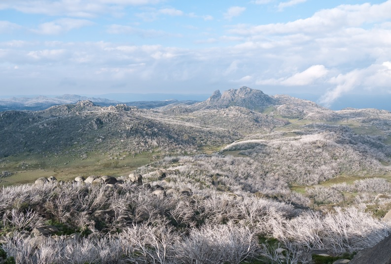 Mount Buffalo is one of the National Parks and forests in Australia you must see!
